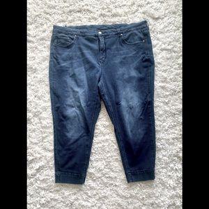 Melissa McCarthy - dark jeans - 24W